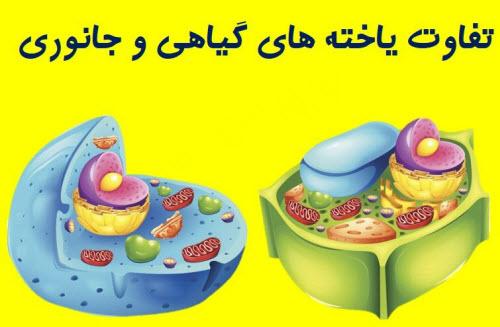 تفاوت سلول های جانوری و گیاهی